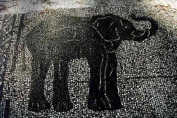 Elephant Ostia Antica